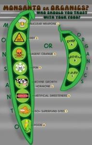 Monsanto_or_Organics_Cartoon_Cropped